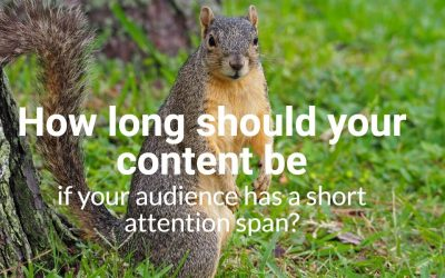 You Are Hereby Released from Thinking About Your Audience's Short Attention Span
